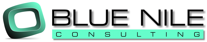 Blue Nile Consulting